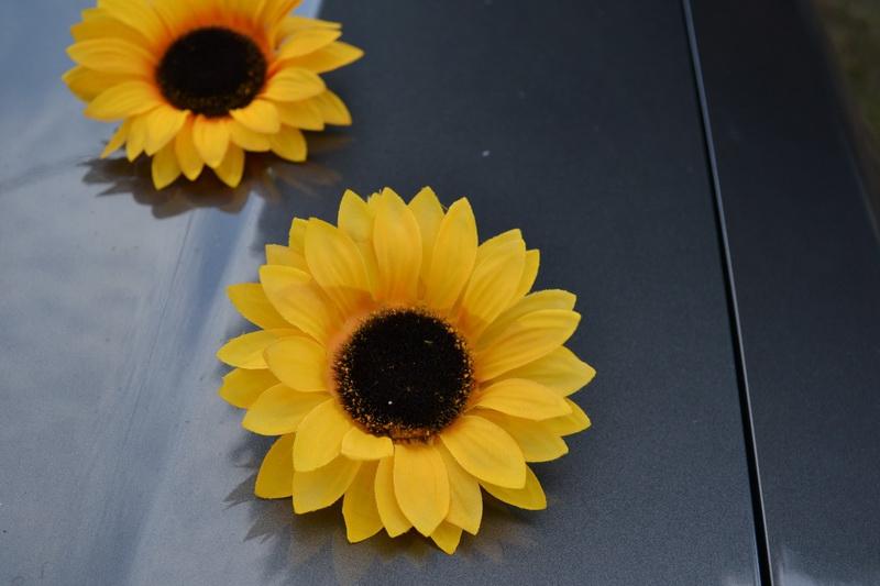 Samolepící květy slunečnice